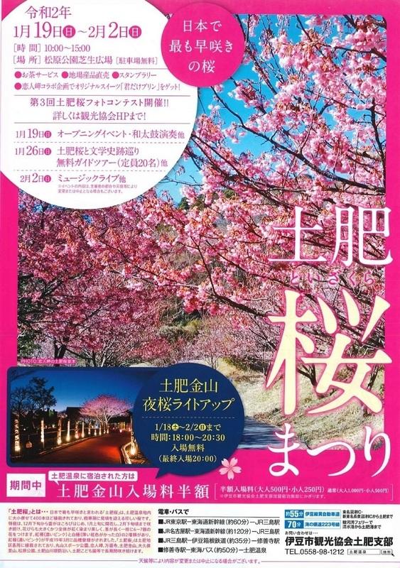 toizakura-03.jpg